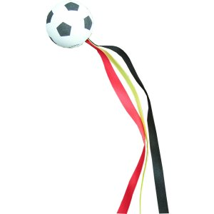 Football with ribbons - Germany